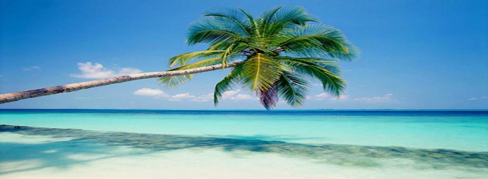 Scoprendo isole tropicali